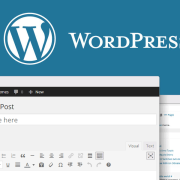 WordPress blog Post